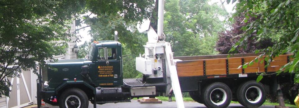 Tree Service with Autocar Crane